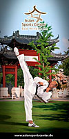 Taekwondo_1_tn
