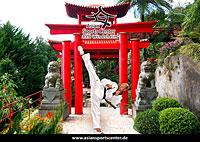 Taekwondo_2_tn