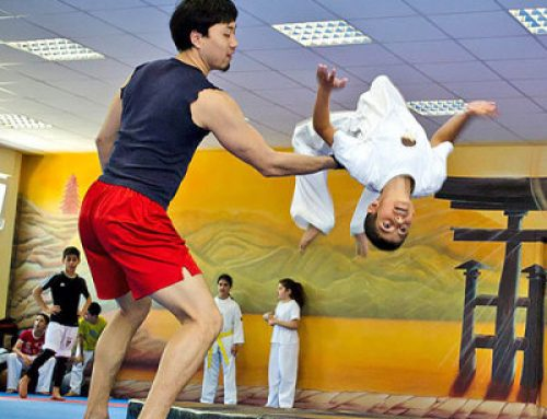 Show Training